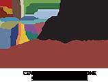 Fondazione CDSE Logo